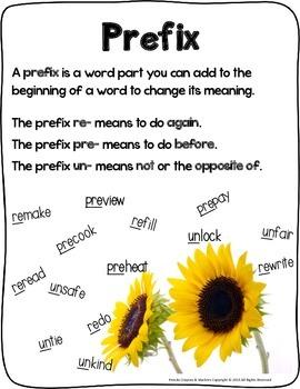Prefixes (re-, pre-, un-)