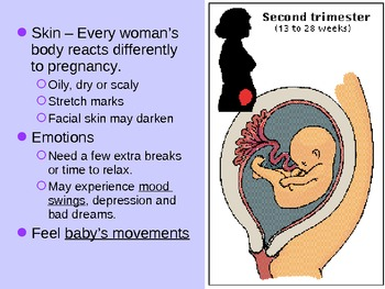Pregnancy Power Point for Reproductive System Unit - Health Class