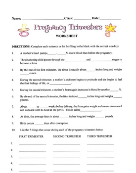 Pregnancy Trimesters Lesson