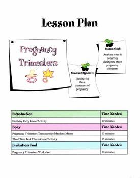 Pregnancy Trimesters Lesson