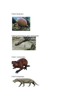 Prehistoric Animal Size Sorting Activity
