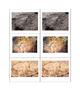 Prehistoric Art - Matching Card Set