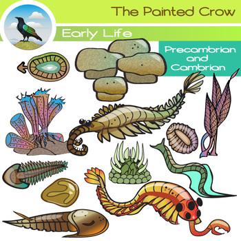 Prehistoric Clip Art - Cambrian - Precambrian - Early Life