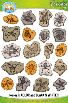 Prehistoric Plant and Animal Fossils Clipart Set — Include