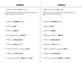 Prehistory Guided Notes for Interactive Notebook