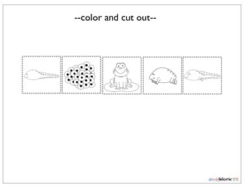 Prek/Kinder Science Cut and Paste Activity Pack