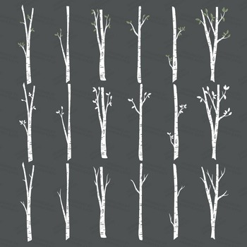 Premium Birch Tree Clipart & Vector Set - Birch Tree Vectors, Cardinals Clip Art