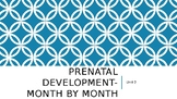 Prenatal Development-Month by Month