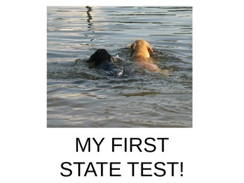 Preparing for the State Test