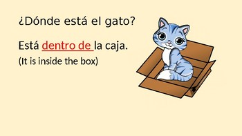 Preposiciones - Prepositions in Spanish ¿Dónde está el gato? Where is the cat?