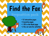Preposition/Basic Concept Activity