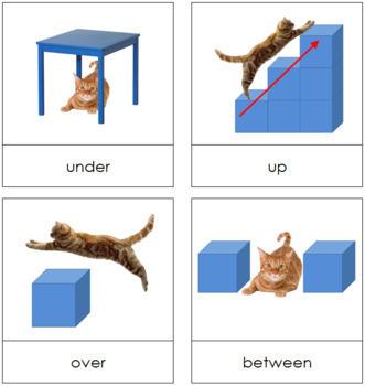 Preposition Picture Cards