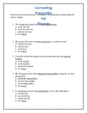 Prepositional Phrase Review