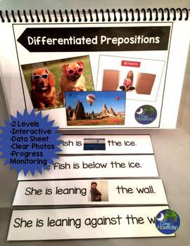 Prepositions Differentiated Unit with Full Color Photos, Data Sheet