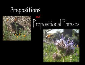 Prepositions and Prepositional Phrases:  Nature Photos