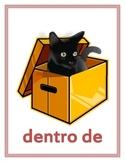 Preposiciones (Prepositions in Spanish) Posters