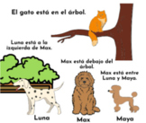 Prepositions of place in Spanish: Cartoon Explainer Video and Practice Activity