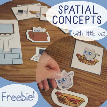Spatial Concepts with Little Cat (receptive prepositions)