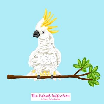 Preppy Cockatoo Clip Art - preppy clip art, Printable Tracey Gurley Designs
