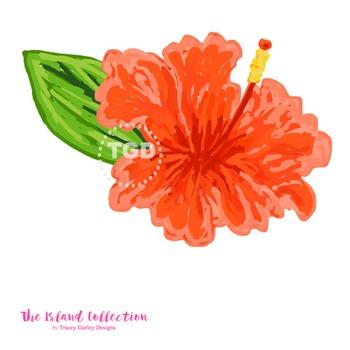 Preppy Coral Hibiscus clip art - Tracey Gurley Designs