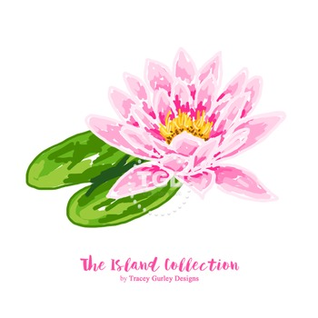 Preppy Water Lily clip art - Tracey Gurley Designs