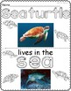 Preschool Animals: Dolphins, Sea Turtles, Whales, and Sharks