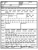 Preschool Data Collection Form