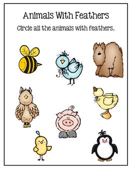 Preschool Dry Erase Activity Sheets