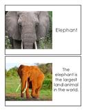 Preschool Elephant Book