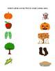 Preschool Fall Matching