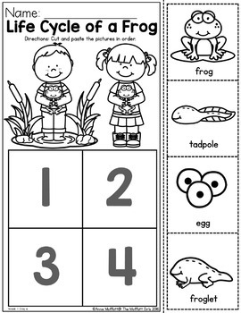 Preschool Home Learning Packet NO PREP Distance Learning