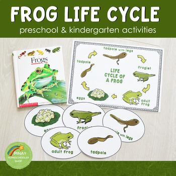 Preschool Kindergarten Frog Life Cycle Activity Set