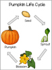 Preschool Kindergarten Pumpkin Science and Math Pack