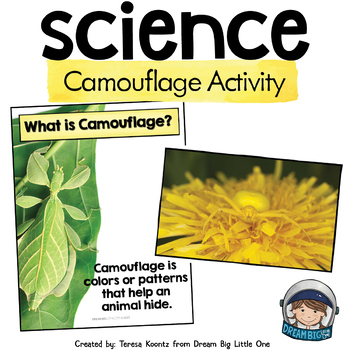 Preschool Life Science Activity - Animals and Camouflage