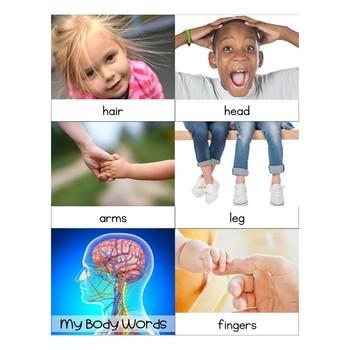 Preschool: My Body Theme Learning Pack
