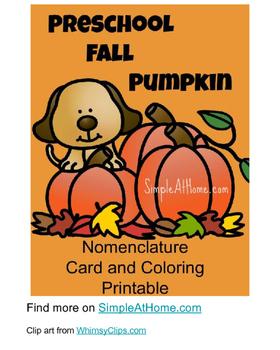 Preschool Pumpkin Nomeclature cards and fun pack