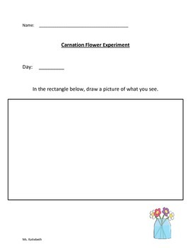 Preschool Rainbow and Color Worksheets and Activities