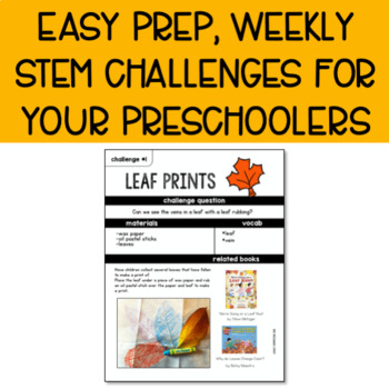 Preschool STEM Challenges: November