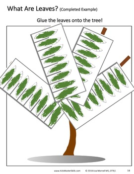 Preschool Scissors Skills and Science - Book 2 - ALL ABOUT LEAVES