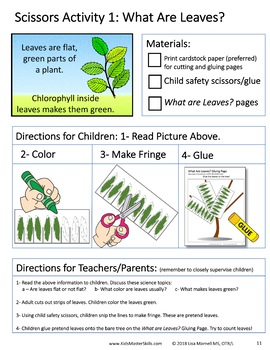 Scissors Skills and Science - Book 2: ALL ABOUT LEAVES - Make Fringe
