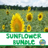 Preschool Sunflower Bundle