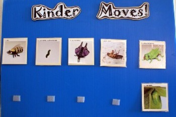 Preschool/Kinder Moves!  Bugs Unit
