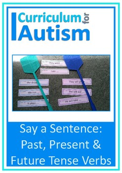 Present, Past & Future Tense Verbs, Say a Sentence, Autism, Special Education