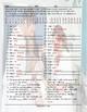 Present Perfect Tense Decoder Box Worksheet