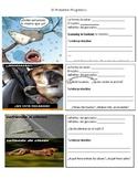 Present Progressive Meme and Comic Activity (El Presente Progresivo)