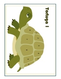 Present Tense Verb Conjugation Game:  Tortuga!