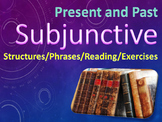 Present and Past Subjunctive PowerPoint and Worksheet for