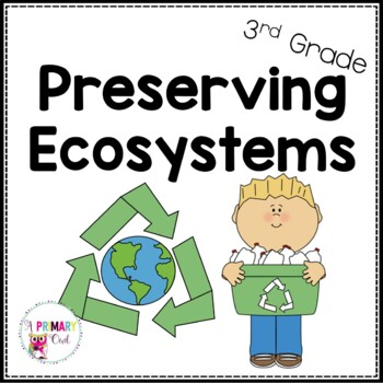 Preserving Ecosystems: Pollution and Recycling Review Game