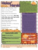 Pretty Fall Newsletter