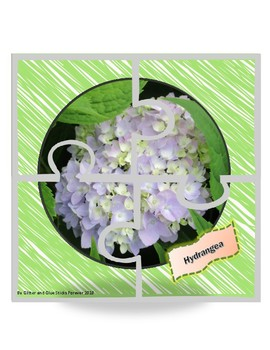 Pretty Posies: 9 4-Piece Flower Puzzles (Real Photographs)